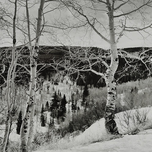 Meadow Mountain, Minturn, CO