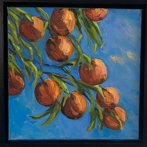 """""""Peach Perfect!"""""""