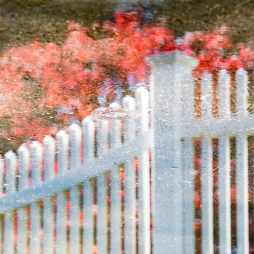 Liquid Fence Reflection