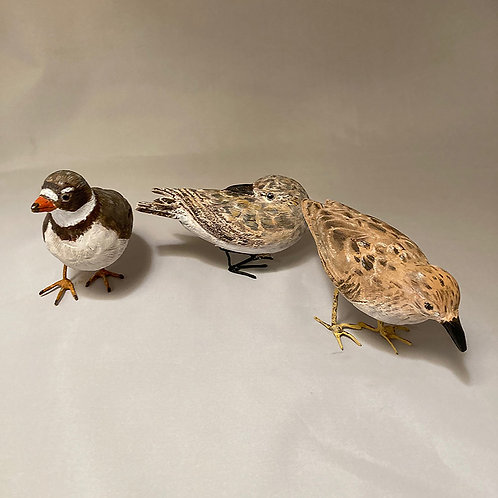 Two sandpipers and a plover