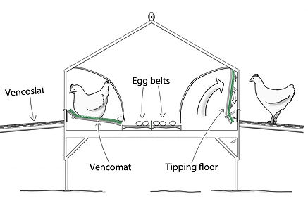 Classic Centrebelt nest.jpg