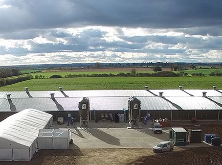 Showcasing the future of commercial egg production at the Sally Farm open days