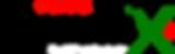 RevealX Logo lg.png