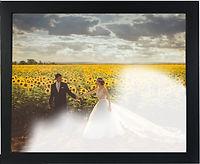 Wedding reveal by Canvas Revealx