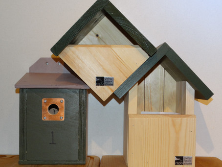 Update on bat and bird boxes