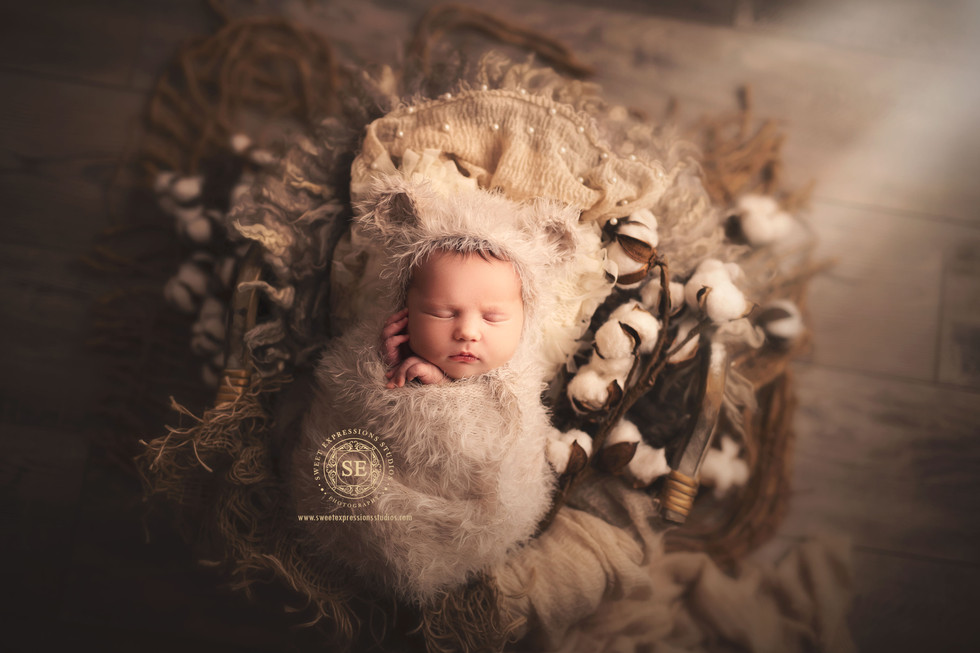 Toronto-Newborn-Photography-Bear-Rustic.