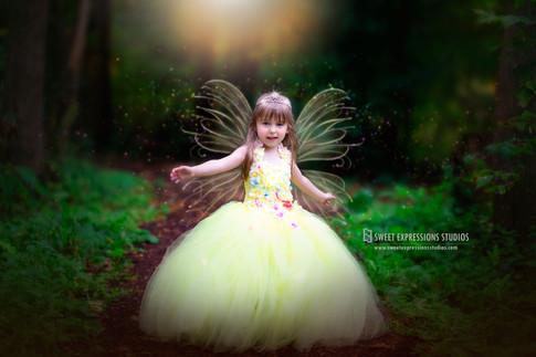 Fairy-Mini.jpg