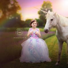 Lavender-Session-Toronto-Unicorn.jpg