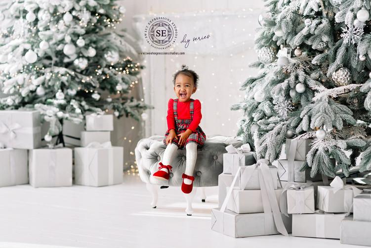 PM1222-2B-Rasia-Christmas-DIY.jpg