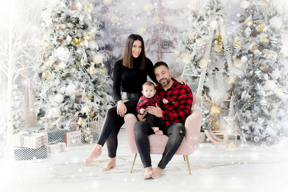Toronto-Christmas-Photography-2020-11.jp