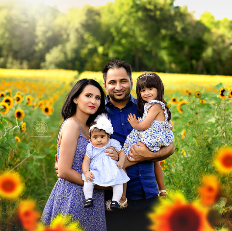 Toronto-Sunflower-Family-Photo-Sessions.