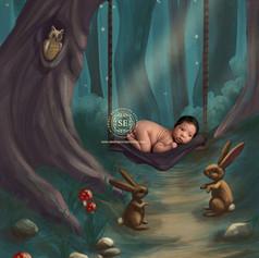 Toronto-Newborn-Photographer-Fairy-Tales