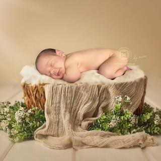 Toronto-DIY-Newborn-Photography.jpg