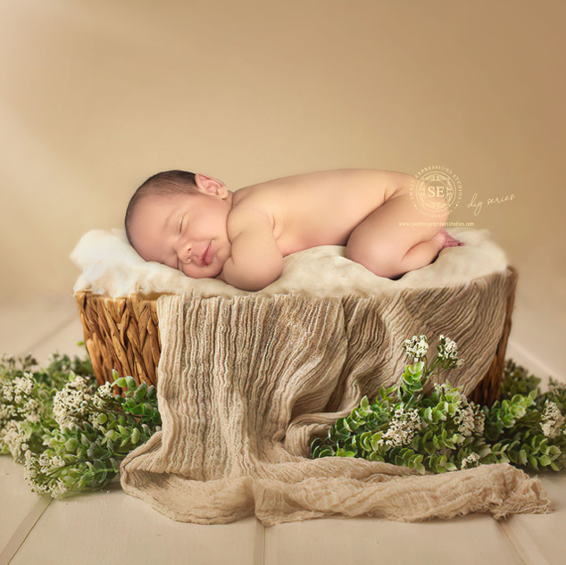 Toronto-DIY-Newborn-Photography.jpg
