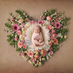 Toronto-Newborn-photography-Heart-shape-