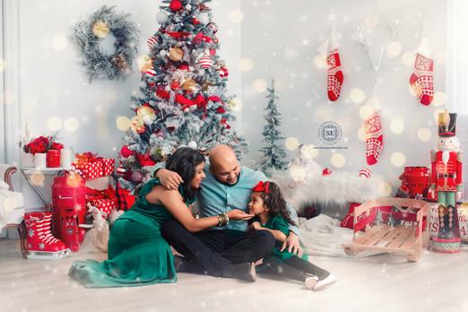 Toronto-Christmas-Photography-089.jpg