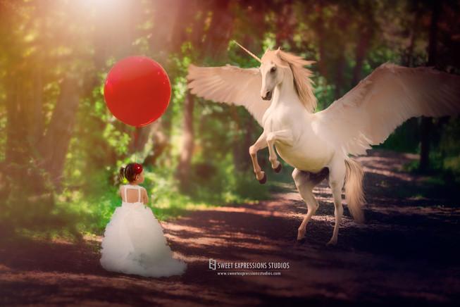Unicorn-Session.jpg