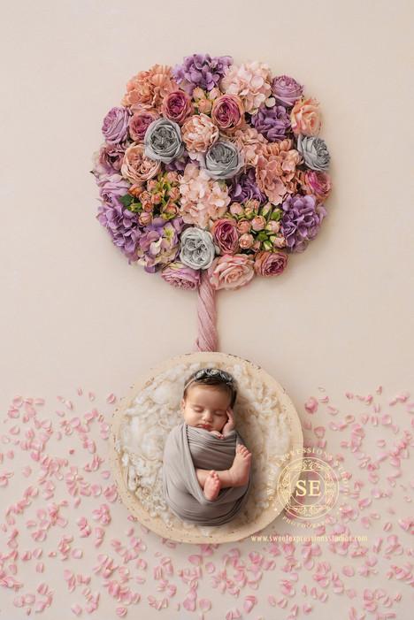 Toronto-Newborn-Flower.jpg