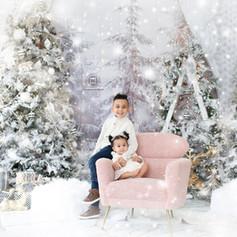 Mint-Room-Christmas-Photo-Session-Toront