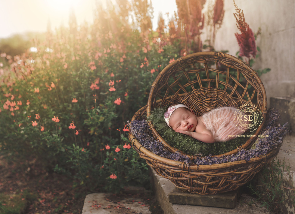Outdoor-Newborn.jpg