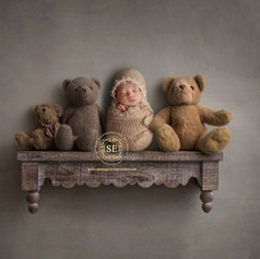 Toronto-Newborn-Bear-on-Shelf.jpg