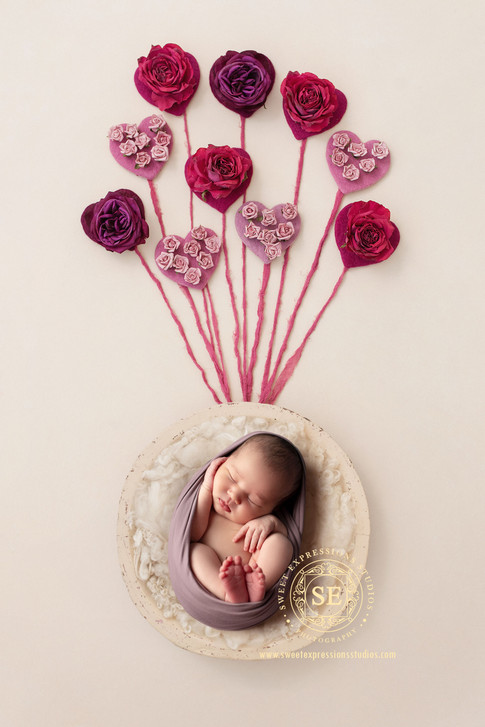 Toronto Newborn Photography Pink Hearts.