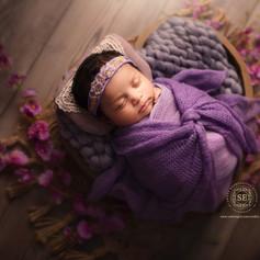 Toronto-Newborn-Photographer-7.jpg