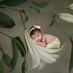 Newborn-photography-Toronto-16.jpg