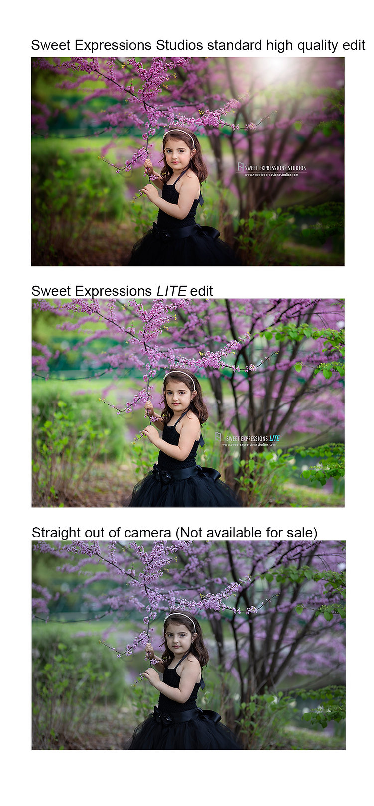 Quality Comparison 2.jpg