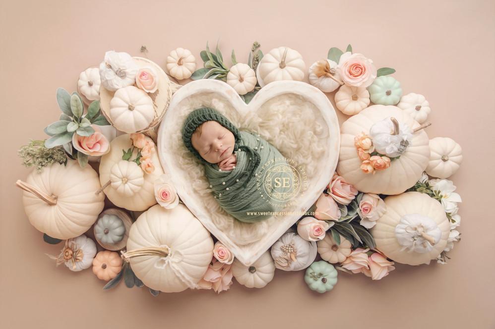 Pumpkins-and-Flowers-.jpg