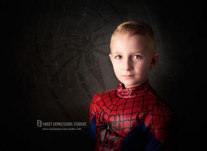 Spiderman-Mini-Toronto.jpg