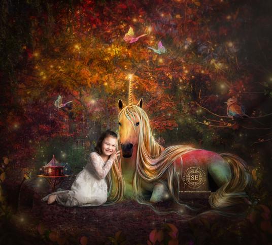 Unicorn-Composite-2.jpg