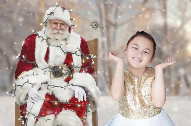 Santa-Christmas-DIY-6556.jpg