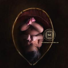 Toronto-Newborn-Photography-Womb-Colour.