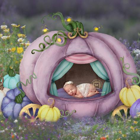 Toronto-Newborn-Photography--Pumpkin.jpg