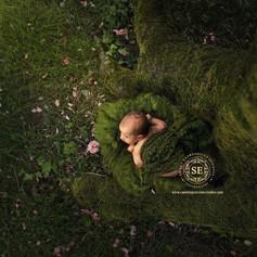 Toronto-Newborn-Photography-Forest-Baby.