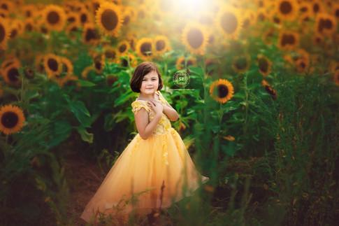 Sunflower-Photo-Session-2020-Toronto-B.j