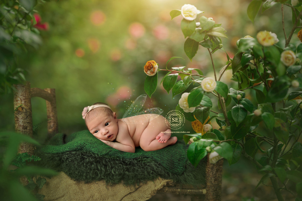 Toronto-Newborn-Photography-fairy.jpg