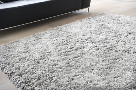 Carpet in Living Room