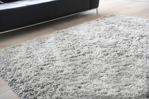 Area rug cleaning fredericksburg va