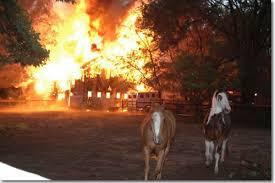 Horse Barn Fire