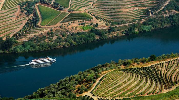 Douro Cruise