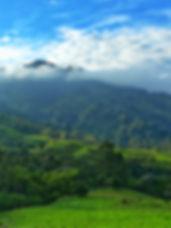 Landscape 7.jpeg
