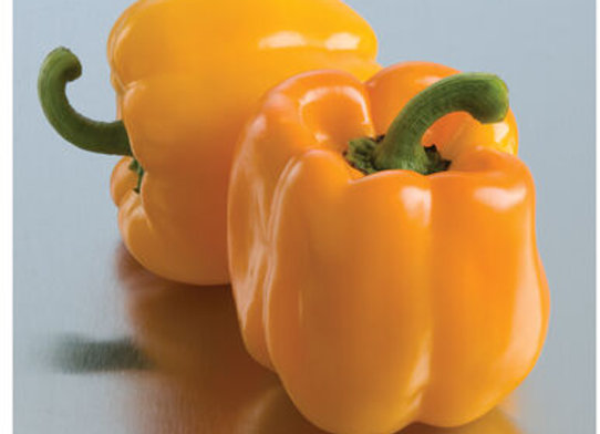 Pepper (mild) - Sweet Sunrise Bell Pepper