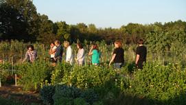 Late summer Aromatic Acres farm tour