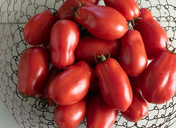 San Marzano II Tomato