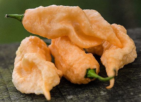 Pepper (hot) - Jay's Peach Bhut Jolokia Pepper