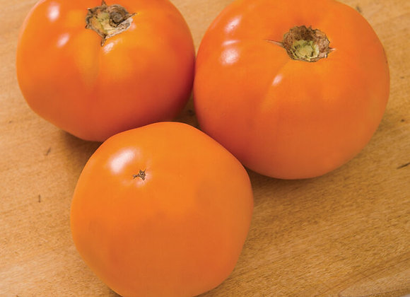 Tomato - Chef's Choice Orange