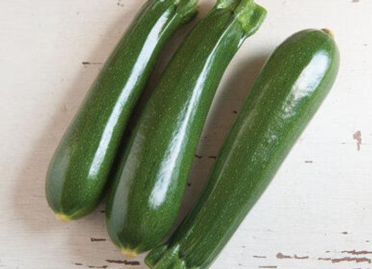 Zucchini - Dunja