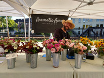 Aromatic Acres' mixed bouquets on display at the TOSA Farmers Market